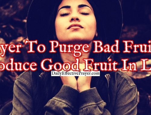 Prayer To Purge Bad Fruit and Produce Good Fruit In Your Life