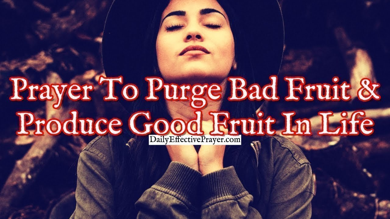 Pray this for getting rid of bad fruit and producing good fruit in your life.