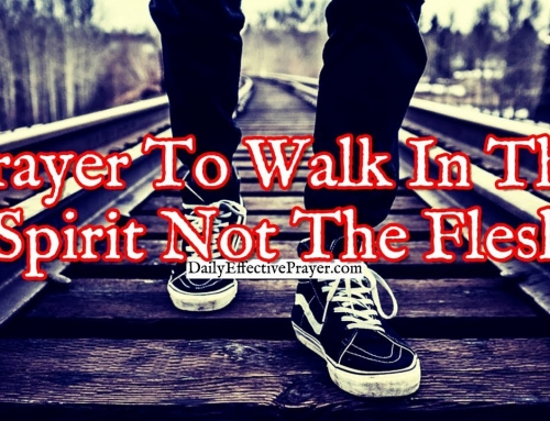 Prayer To Habitually Walk In The Spirit and Not The Flesh