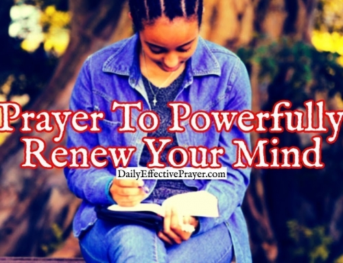 Daily Prayer To Powerfully Renew Your Mind