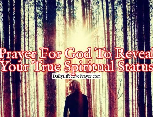 Prayer For God To Reveal Your True Spiritual Status