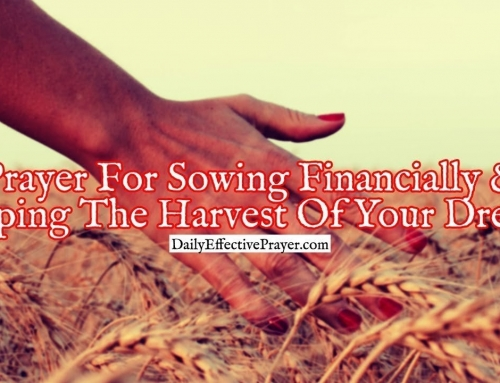 Prayer For Sowing Financially and Reaping The Harvest Of Your Dreams