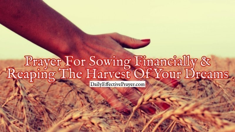 Pray this when sowing seed and you want to see a harvest.