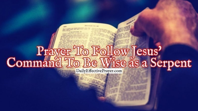 Pray this for wisdom like a serpent.