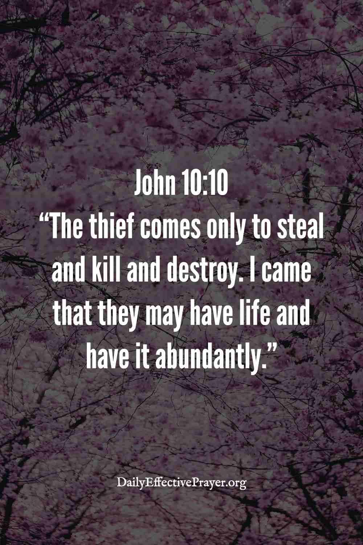 Abundant life verse - John 10:10.